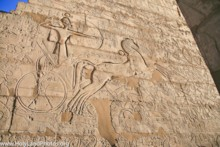 Rameses II Chariot