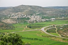 Lebonah
