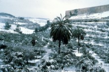 Kidron Valley Snow