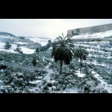 Kidron Valley Snow