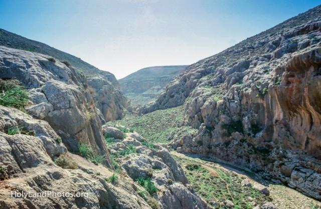 Wadi Suweinit