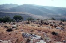 Dhahr Mirzbaneh View