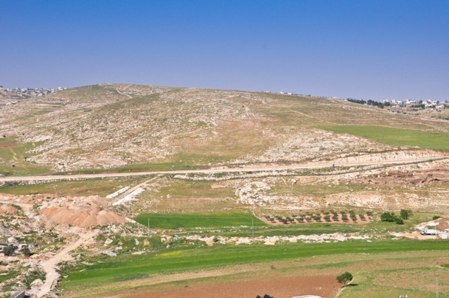 Fields Near Bethlehem 1