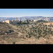 Road to Bethlehem