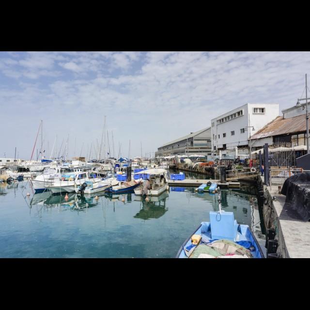 Jaffa Port 1