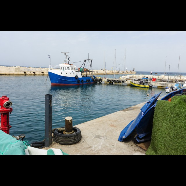 Jaffa Port 2