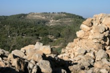 View to Azekah
