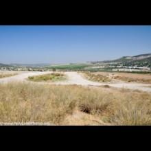 Sorek Valley 1
