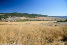 Zorah Ridge