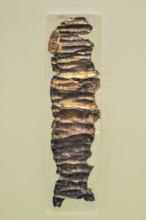 Large Amulet