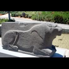 Basalt Lion