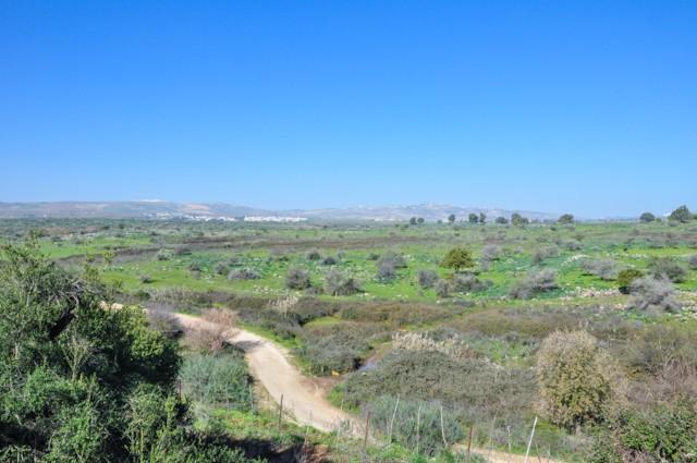 View to Lebanon