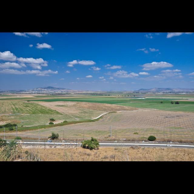 Moreh and Gilboa