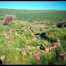 Korazin Spring 1967