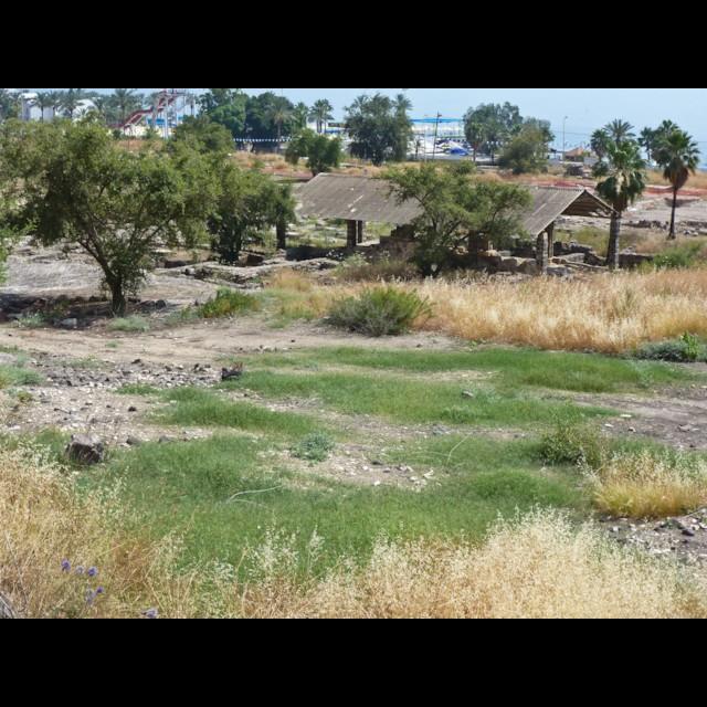 North Excavations