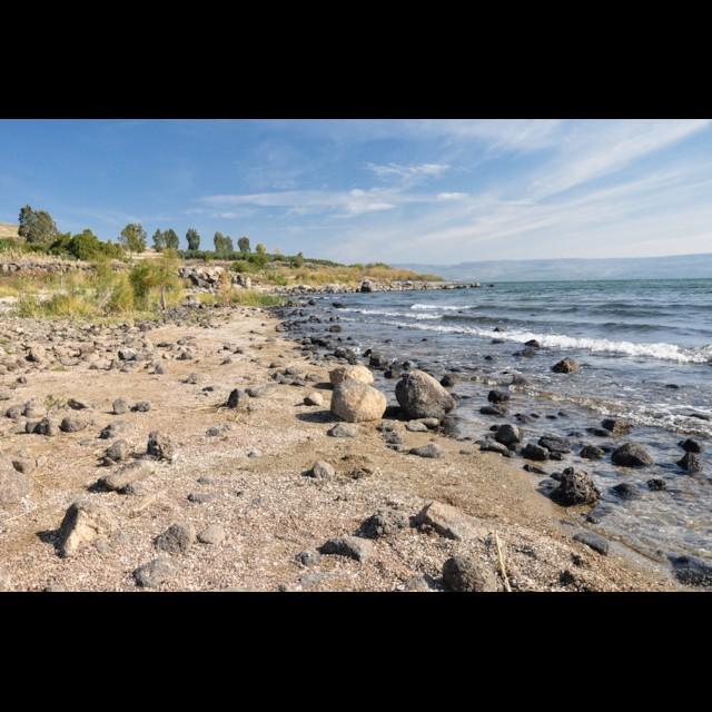 Northwestern Shore