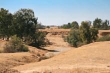 Nahal Besor