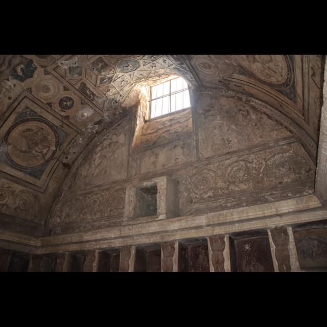 FB Tepidarium Decorative Ceiling