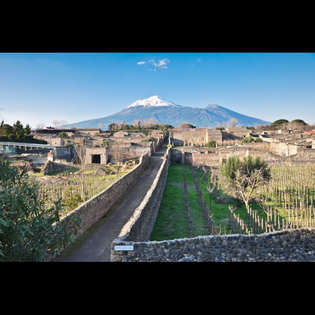 Mount Vesuvius and Gardens