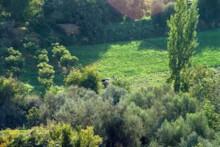 Wadi es-Sir 3