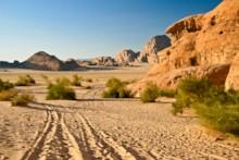 Desert and Sandstone