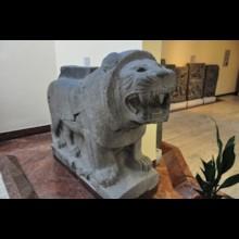 Lion Orthostat