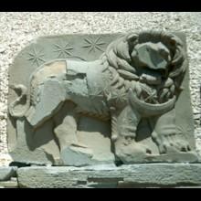 West Terrace Lion Horoscope