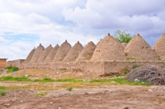 Mud Brick Buildings