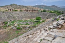 Arena in the Stadium