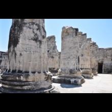 Columns at Entrance