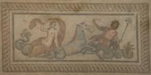 TH2 Neptune  Mosaic