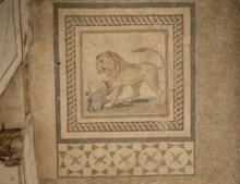 TH3  Lion Mosaic