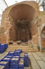 TH6  Basilica