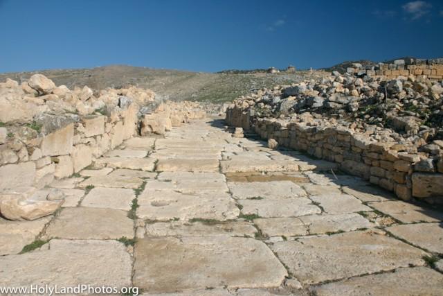 Pilgrims Path 2