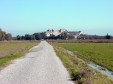 Approach to Miletus