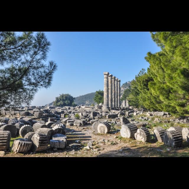 Athena Temple 1