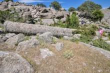 Quarry 2c