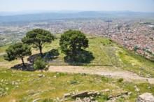 Altar of Zeus 1