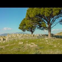 Altar of Zeus 3