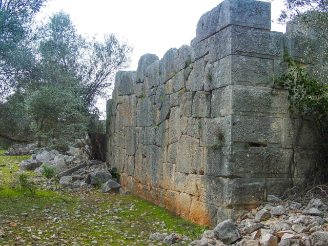 Back Wall