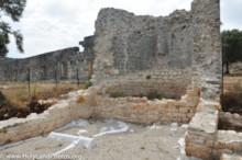 Synagogue and Granary