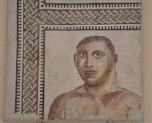 Mosaic Boxer
