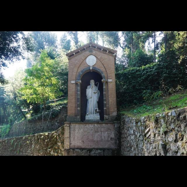 Saint Bernard