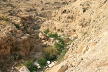 Wadi in Wilderness