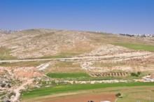 Fields Near Bethlehem 1