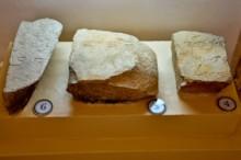 Paleo-Hebrew Inscriptions
