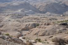 Hasmonean Palaces