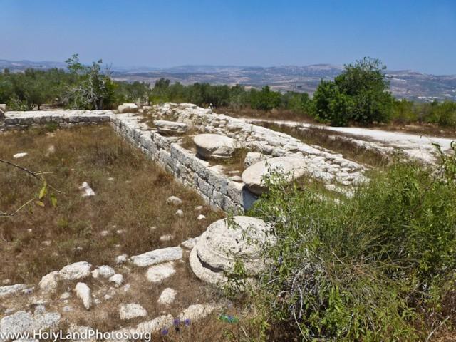 Augustus Temple 3