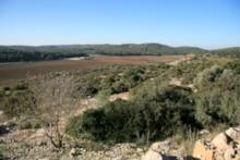 View to Ephes Dammim