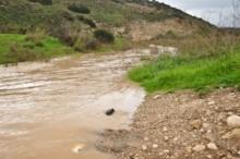Flood Waters 1